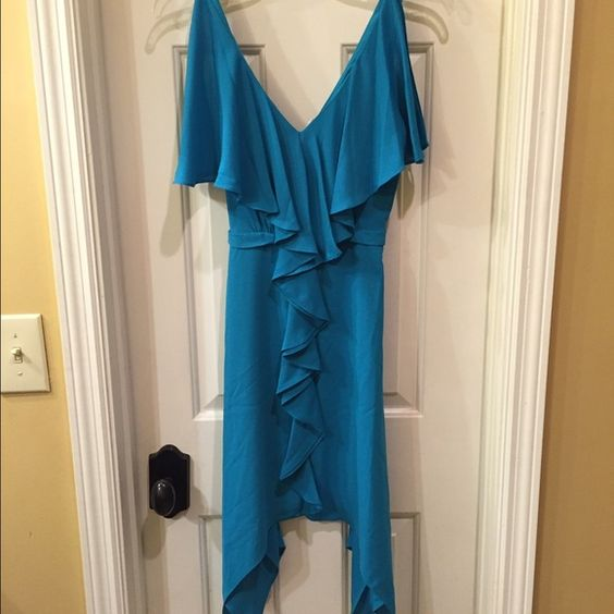 Max & Cleo NWT JESSICA dress size 4 NWT dress has a back zip closure and a soft jersey liner Size 4 retail tags attached no flaws Max & Cleo Dresses Midi