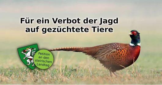 Petition an den steirischen Landtag