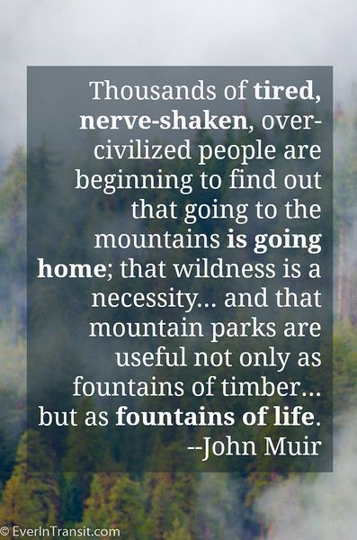 Nature is the fountain of life | Best John Muir quotes