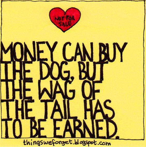 Money Can Buy the Dog, But....
