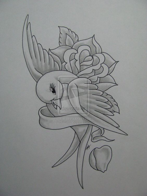 Explore Bejag Tattoo Bird S And More Pencil Drawings Swallow