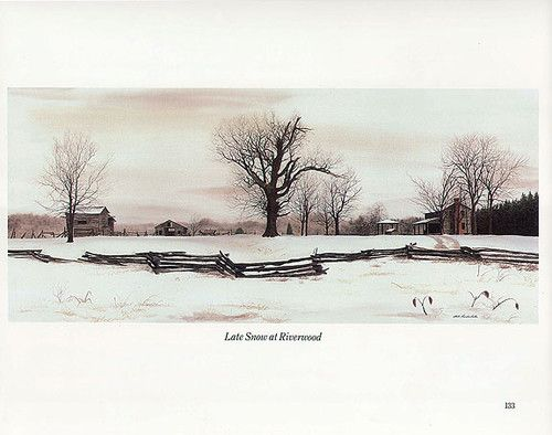 Bobs And Snow On Pinterest