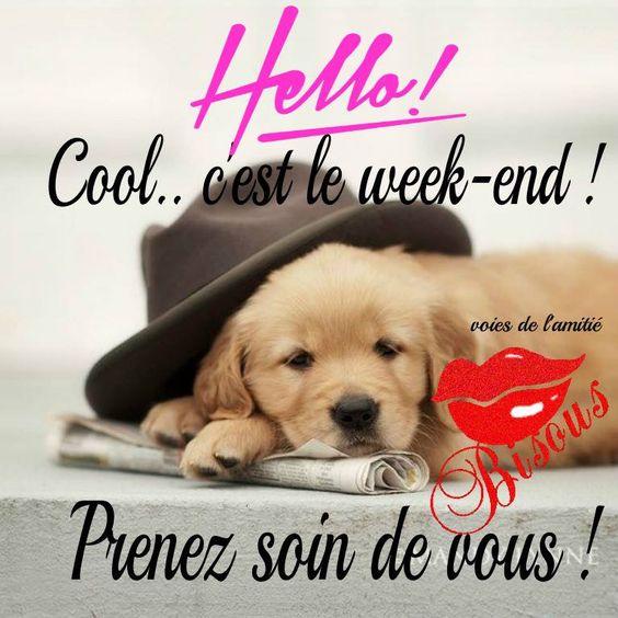 Hello! Cool... c'est le week-end ! Prenez soin de vous !: