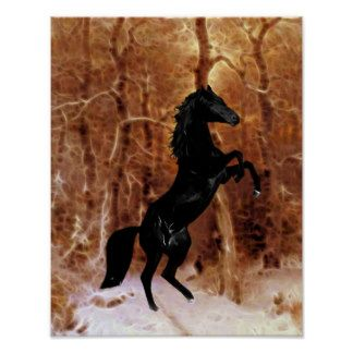 A friesian in winter snow posters