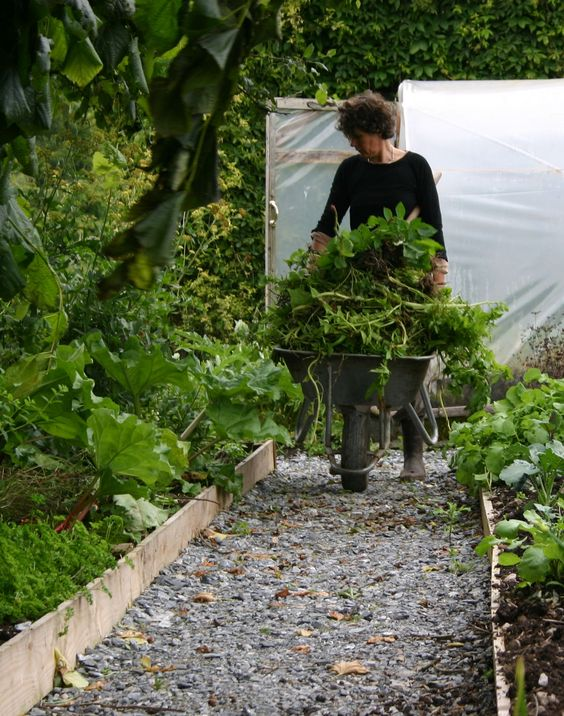 The three towers eco house county galway vegetables and for Garden design galway