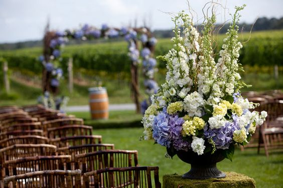 Boda en un viñedo :: Violet vineyard wedding