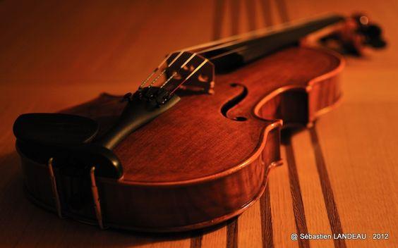 Violín / Violin / Violon