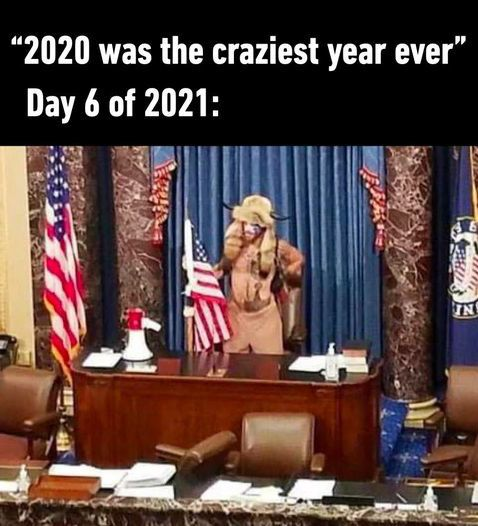 Pin By Twogonecoastal On My 2021 Diary In 2021 Best Funny Pictures Laugh Out Loud Name Calling