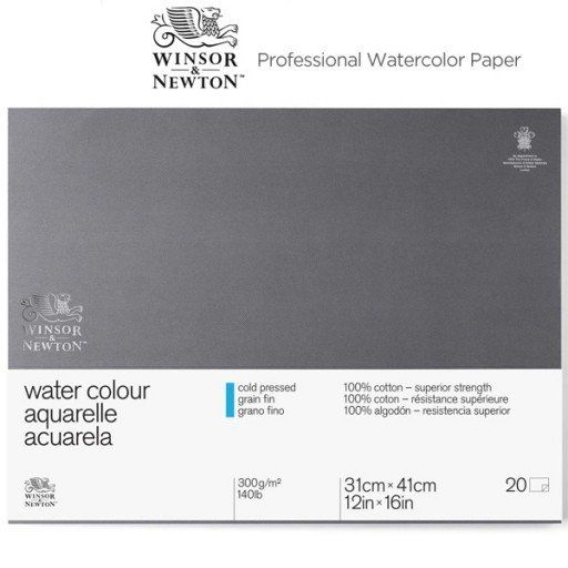 In My Opinion Best Watercolor Paper For A Finished Professional