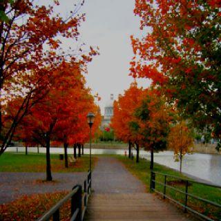 Montreal, Canada. October 2011  My <3 belongs here