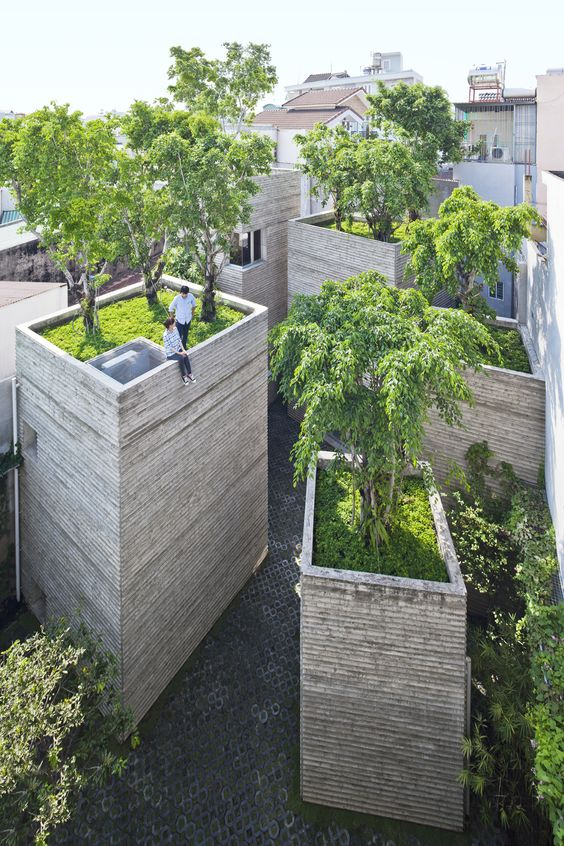 house for trees ~ vo trong nghia architects: