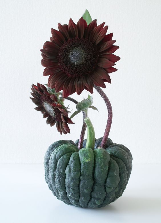 ikebana:2012:(pumpkin &sunflower):