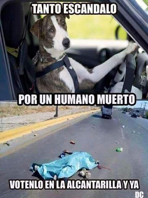Humano muerto