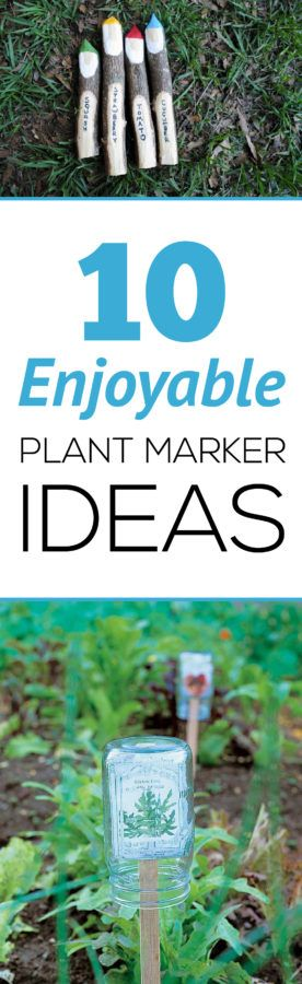 10 Enjoyable Plant Marker Ideas Plant Markers Markers