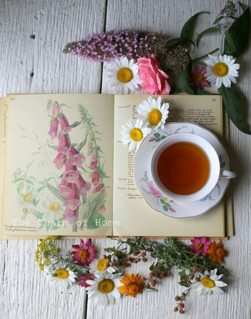 Stunning aerial shot -- June Visual Tea/Garden Journal at The Charm of Home:
