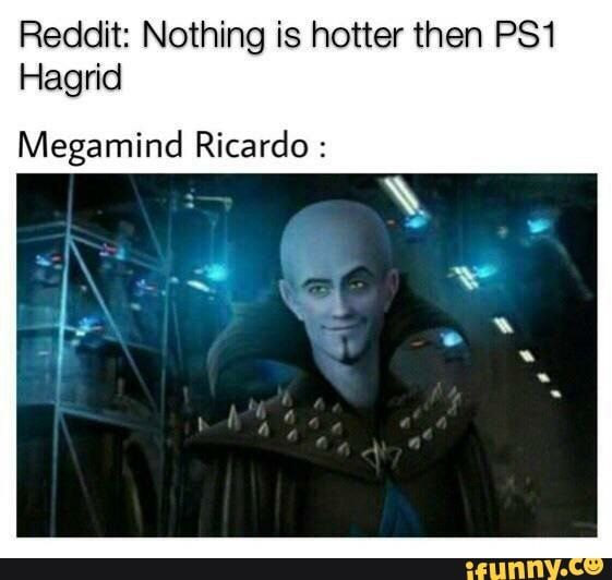 Reddit Nothing Is Hotter Then Ps1 Hagrid Megamind Ricardo Ifunny Stupid Memes Funny Relatable Memes Funny Memes