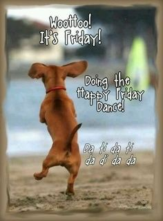 It's Friday.  What a happy feeling!   Great. We can sleep late, enjoy breakfast, read the paper and. Then plan your week end. Have fun or just relax.: