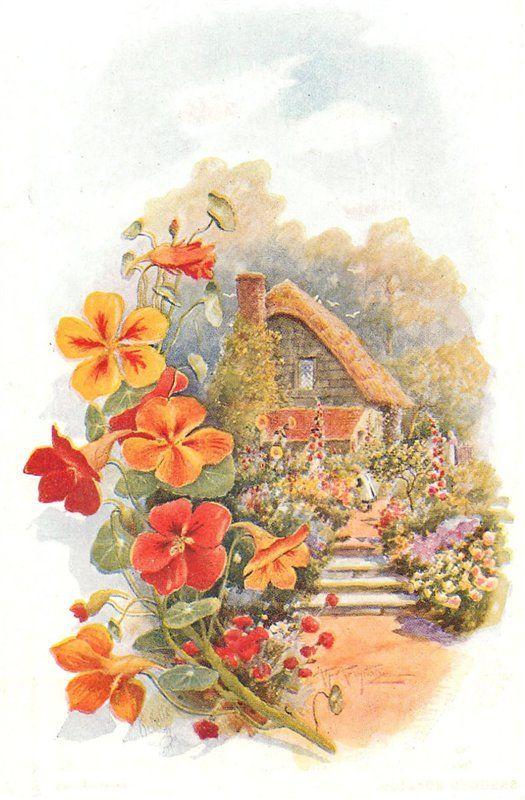 Старые открытки дома