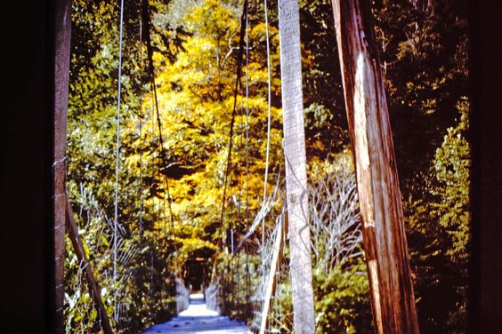 Long swinging bridge, Leslie County, KY, FNS, 1974-75,  Photo by Sherrie Rice Smith