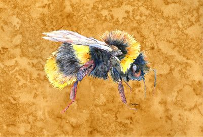Bee on Gold Fabric Placemat