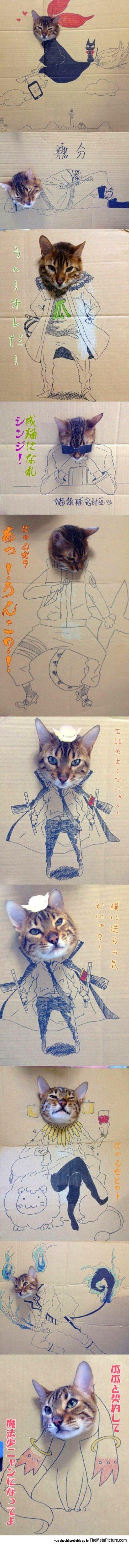 Les aventures d'un chat avec du carton... - <a href=