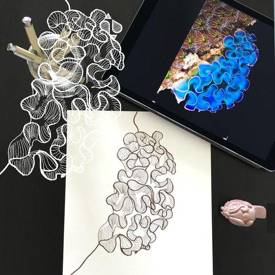 Day 26 #30ideas30days #illustration #flowers #blackandwhite #drawing #patternly.design #30ideias30dias #ilustração #flores #pretoebranco #desenhoobservacao #decolalab2016 #oficinaamandamol