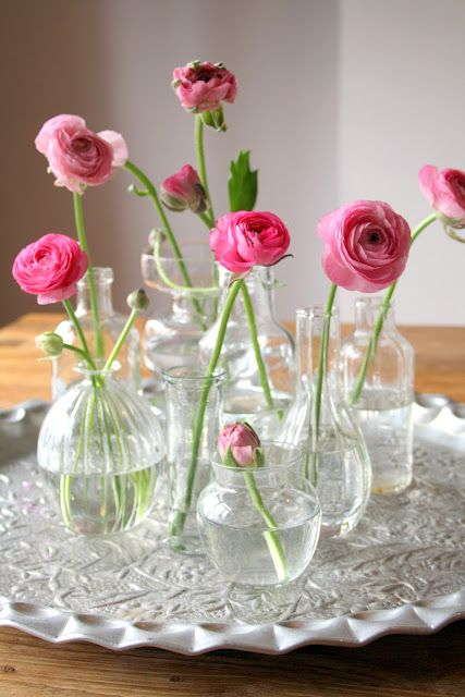 Floral Arrangement ~ vignette of pink ranunculus in assorted clear vases, jars <3