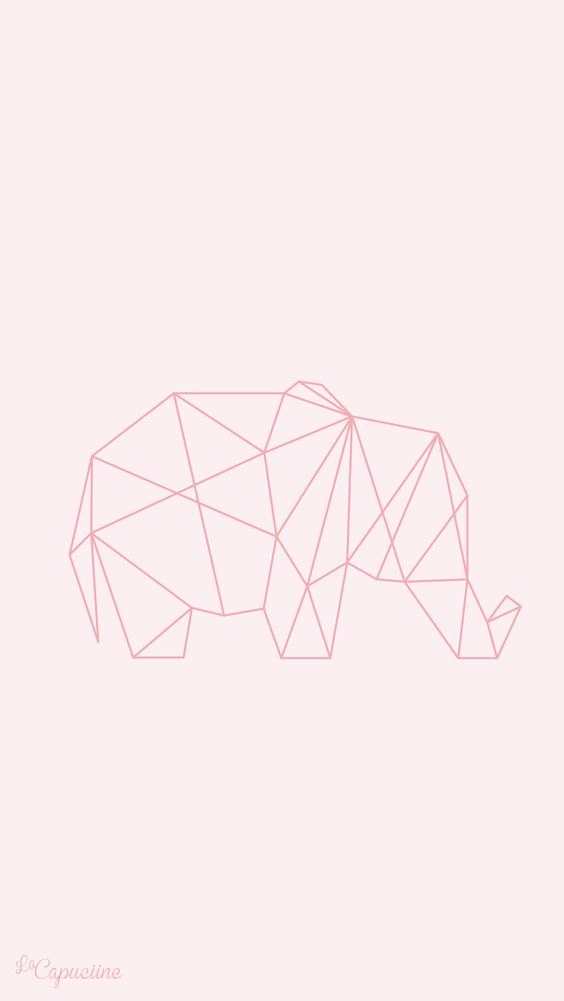 Fond d'écran éléphant origami La Capuciine