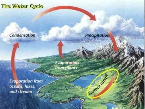 ▶ Water Cycle, The Never Ending Water Cycle - YouTube