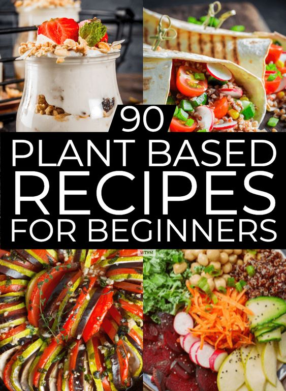 Plant Based Diet Meal Plan For Beginners: 90 Plant Based Recipes