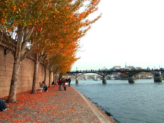 outono em paris - Pesquisa Google