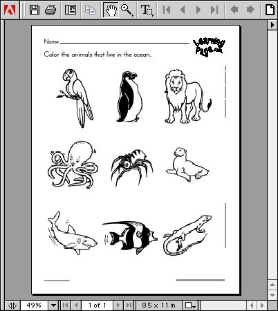 Classifying Animals Worksheets | PRINTABLE CLASSIFYING ANIMALS WORKSHEETS