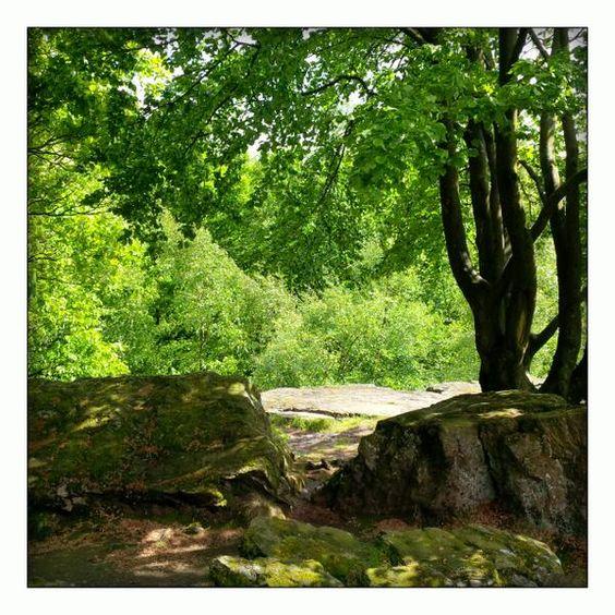 Wandelen in de groene natuur van de Franse Ardennen #ArdenneAllAccess