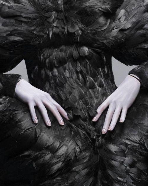 Alexander Mcqueen raven dress