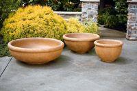 Low bowl terra cotta planters