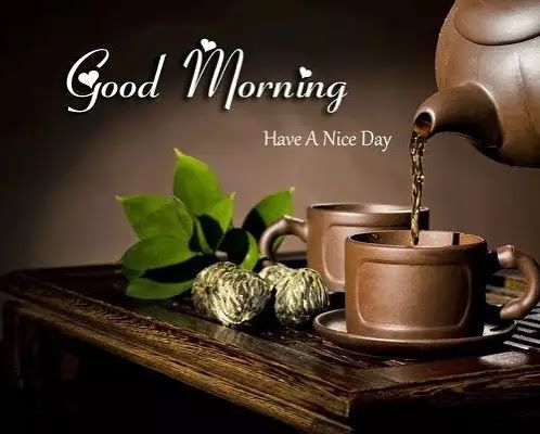 254 Best Beautiful Good Morning Images Pic Good Morning Wallpaper Good Morning Good Morning Beautiful