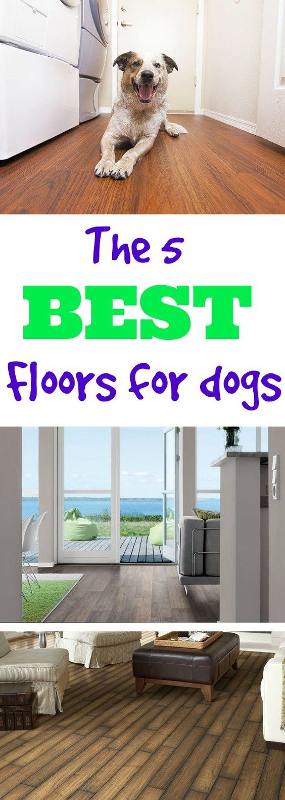 What 39 s the best flooring for dogs pinterest flooring for Dog friendly flooring ideas