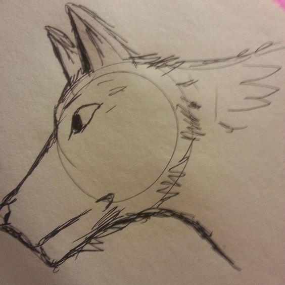 #Inktober Day 2 - Wolf (House Of Stark) - Pen sketch inspired by Game Of Thrones - HopesBubbles.com