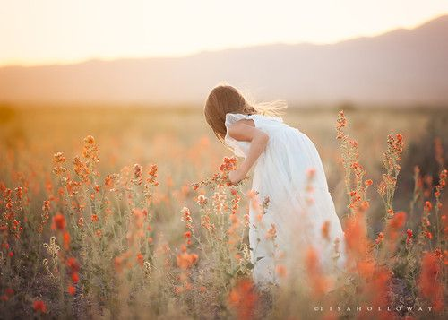 Picking Flowers by Lisa Holloway