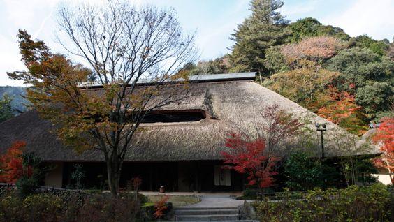 10月29日+霎時施+-+近くの山を歩くと栗がたくさん落ちていて、秋の深まりを感じました。