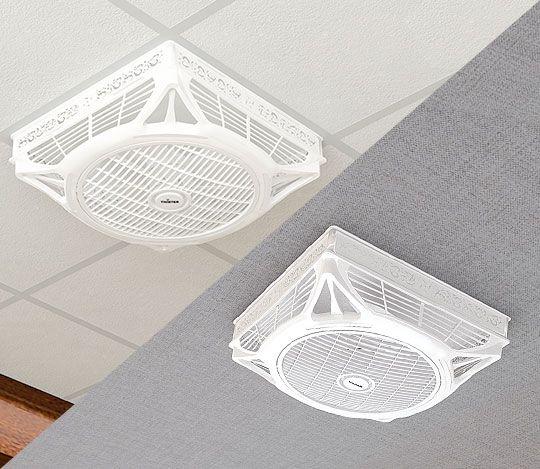 Pin On False Ceiling Fans Twister Pk