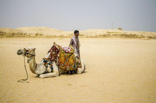 Camel, Egypt, vendors, Africa, desert, sun http://theworldunderourfeet.com/?p=2659