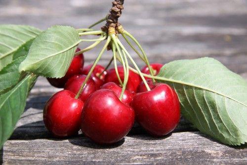 Rum Cherries / Love Cherries Rumkirschen / Liebeskirschen