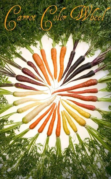 A visual reminder to look for our Cal-Organic Rainbow Carrots while you're out shopping at #WholeFoods!