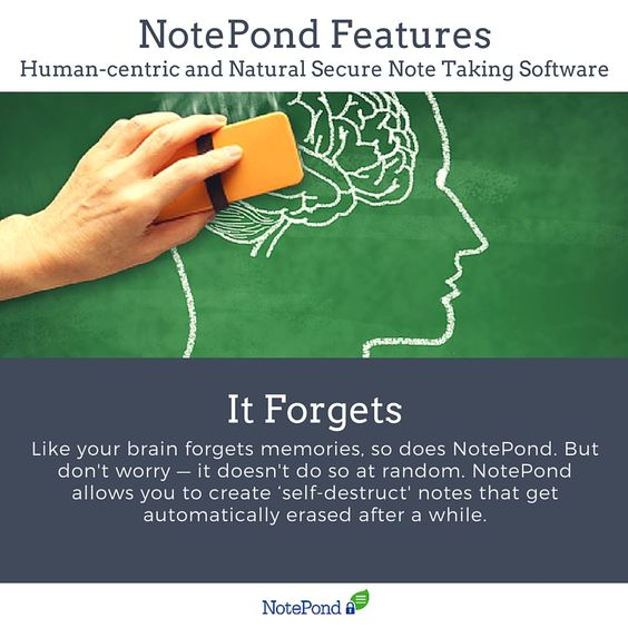Like your brain forgets memories, so does NotePond. But don't worry — it doesn't do so at random. NotePond allows you to create 'self-destruct' notes that get automatically erased after a while. Read