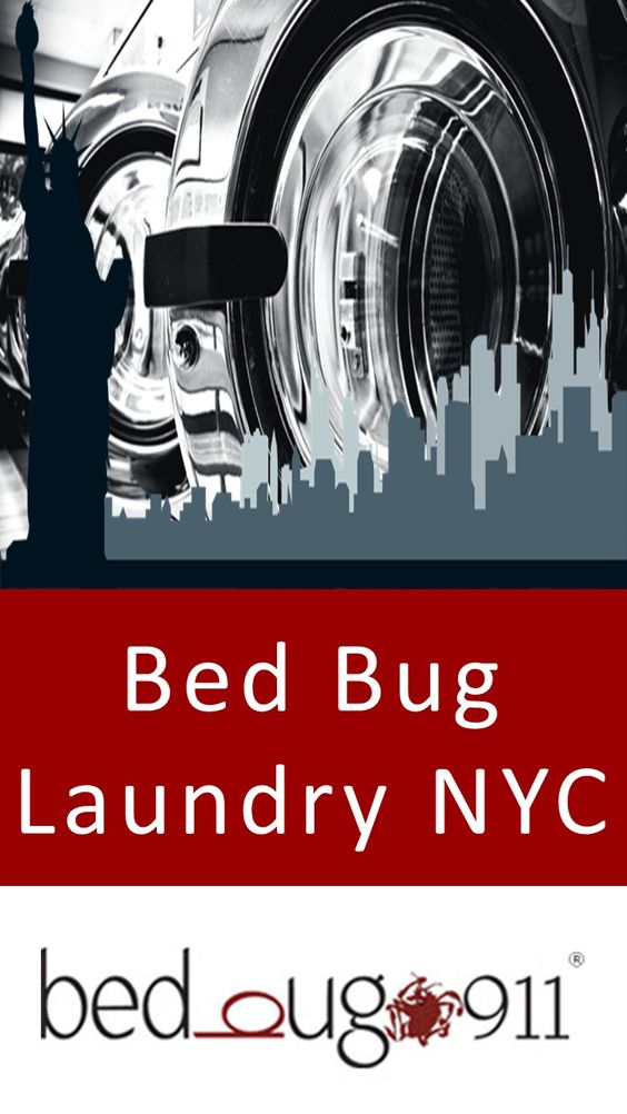 Bed Bug Laundry NYC  Having access to a facility that can process and treat bed bug laundry in NYC is vital to bed bug extermination. Sending bed bug infested items through the wash is the best way to ensure the bed bugs are eradicated without relying on chemicals.