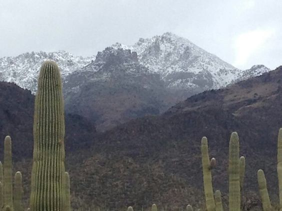 Tucson jan 2016