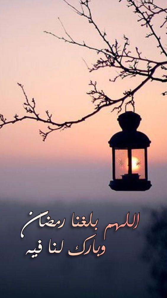 صور قبل قدوم شهر رمضان المبارك أدعية وتهنئة مداد الجليد Ramadan Kareem Decoration Ramadan Background Ramadan Quotes