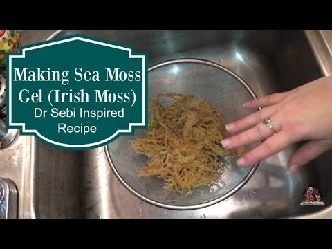 How To Make Seamoss Gel The Electric Cupboard Youtube Cooking Recipes Healthy Nutritious Smoothies Nutritious Smoothie Recipes