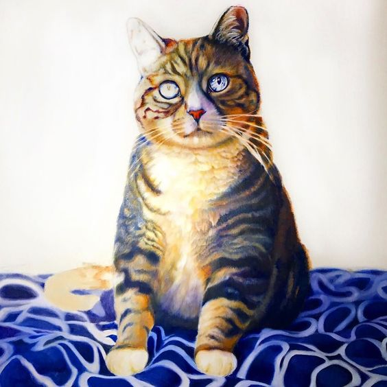 """Gitzo"" oil on linen progress pic.  #oilpainting #realism #petportrait #catart #wip #workinprogress #art_spotlight  #artist #artisttowatch #photorealism #catsofinstagram #catstagram #kitty #cute #love #fluffy #eyes #animalart #naturelovers #catlovers #catladyproblems #catlady #gift #giftideas #artistoninstagram #artpop #artistlife #artists_magazine by colossal_portraits"
